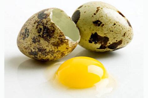 Перепелиные яйца и потенция